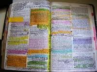 Biblia sublibiata