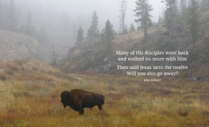 rejection-disciples
