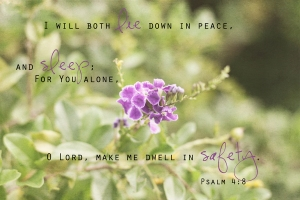 Psalms 4 8_1