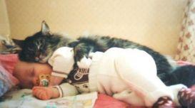 buna-dimineata-unii-inca-mai-dorm_cedf0c3a341fa7