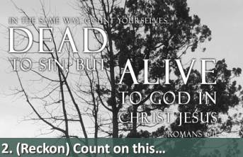 dead-to-sin-but-alive-to-god