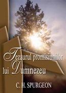 Tezaurul_promisiunilor_lui_Dumnezeu1_thumb