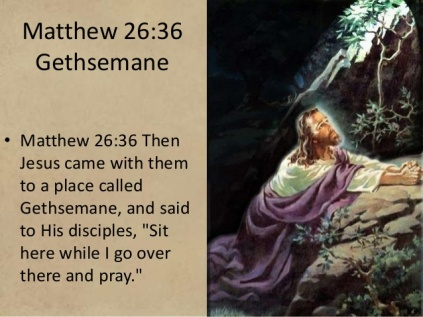 matthew-26-caiaphas-high-priest-last-supper-table-gethsemane-olive-press-the-shepherd-your-sword-guns-gun-control-self-defense-adjure-tear-his-clothes-blasphemy-god-knows-the-heart-ss-16-638